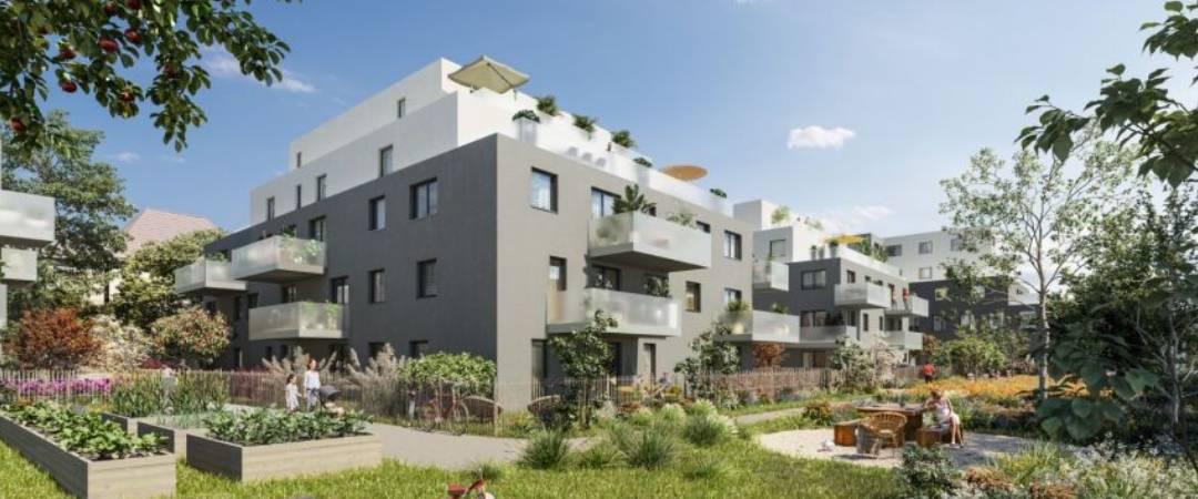 Urban Green Bischheim